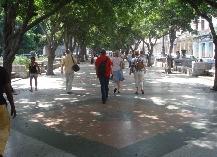 Havana Demo (29).JPG